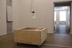 incubator1